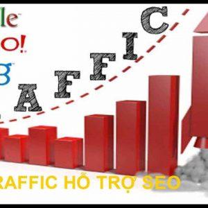 Dich Vu Tang Traffic Ho Tro Seo (1)