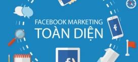 Cách seeding hiệu quả cho chiến lược marketing của bạn